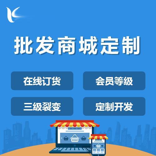 批发小程序商城购物商城开发与搭建直播商城系统开发定制